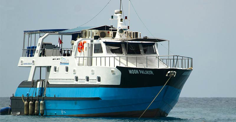 Moon Palikir Boat charter